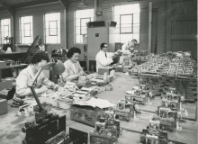 Torbal Production Line